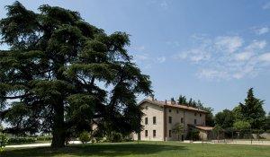 progetto azienda vitivinicola
